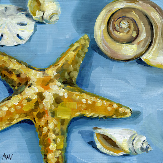 shells-on-sky.jpg
