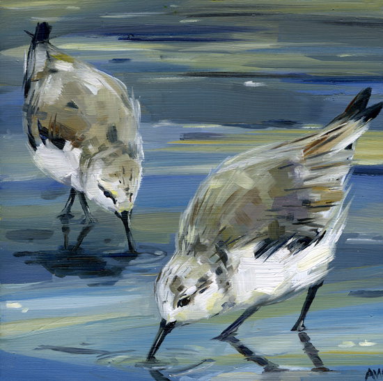 shorebird-pair.jpg