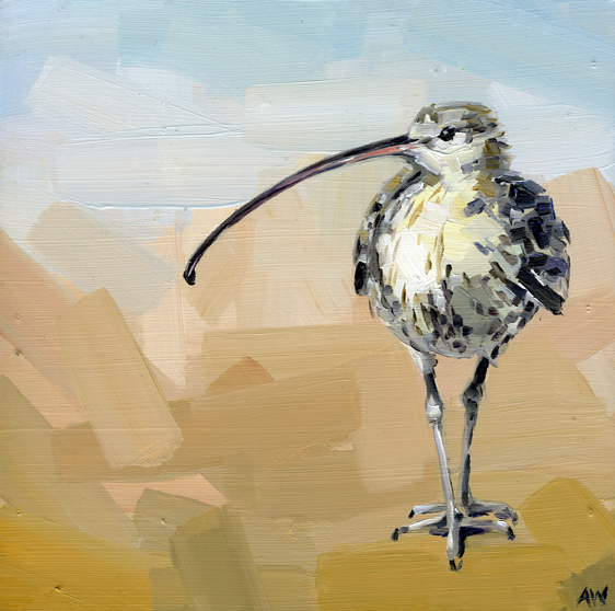 common-curlew.jpg