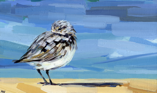 shorebird-with-the-blues.jpg