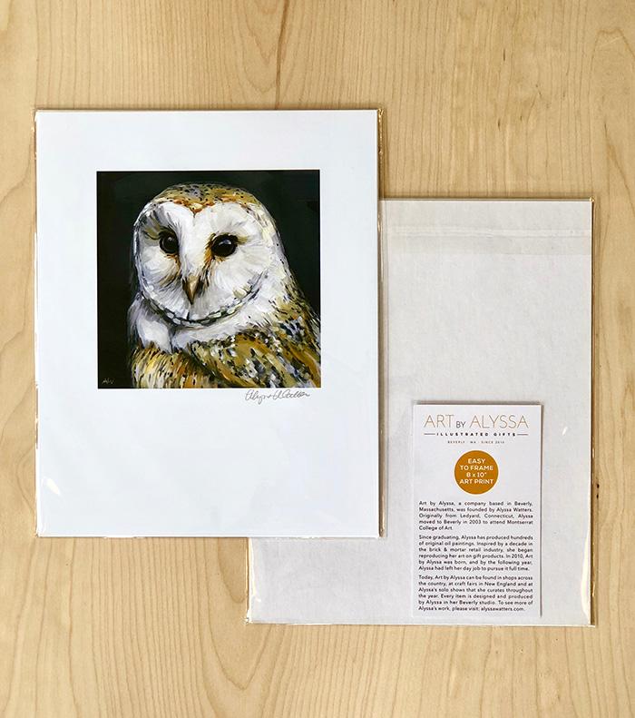 barn-owl-8x10-p.jpg