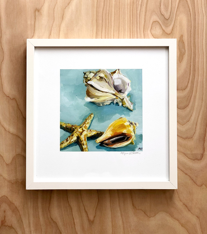 shells-in-frame.jpg