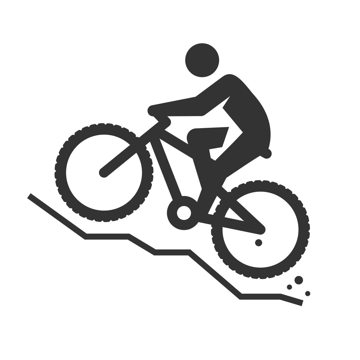 noun_mountain bike_364631_333333.png