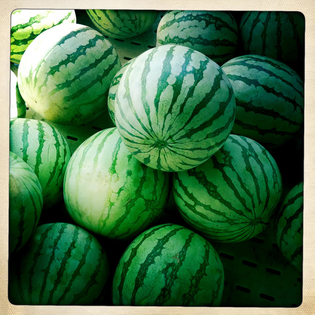Watermelon ©Lisa Berman