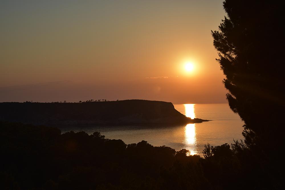sunset_vibratesummer.jpg