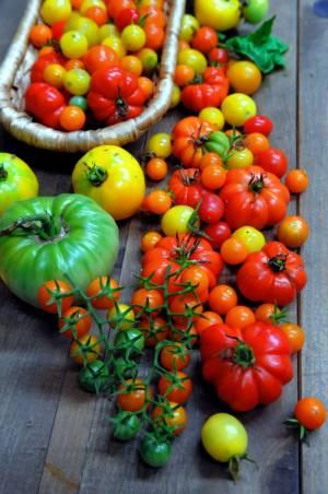 082714-f-tomatoesverticle60p.jpg