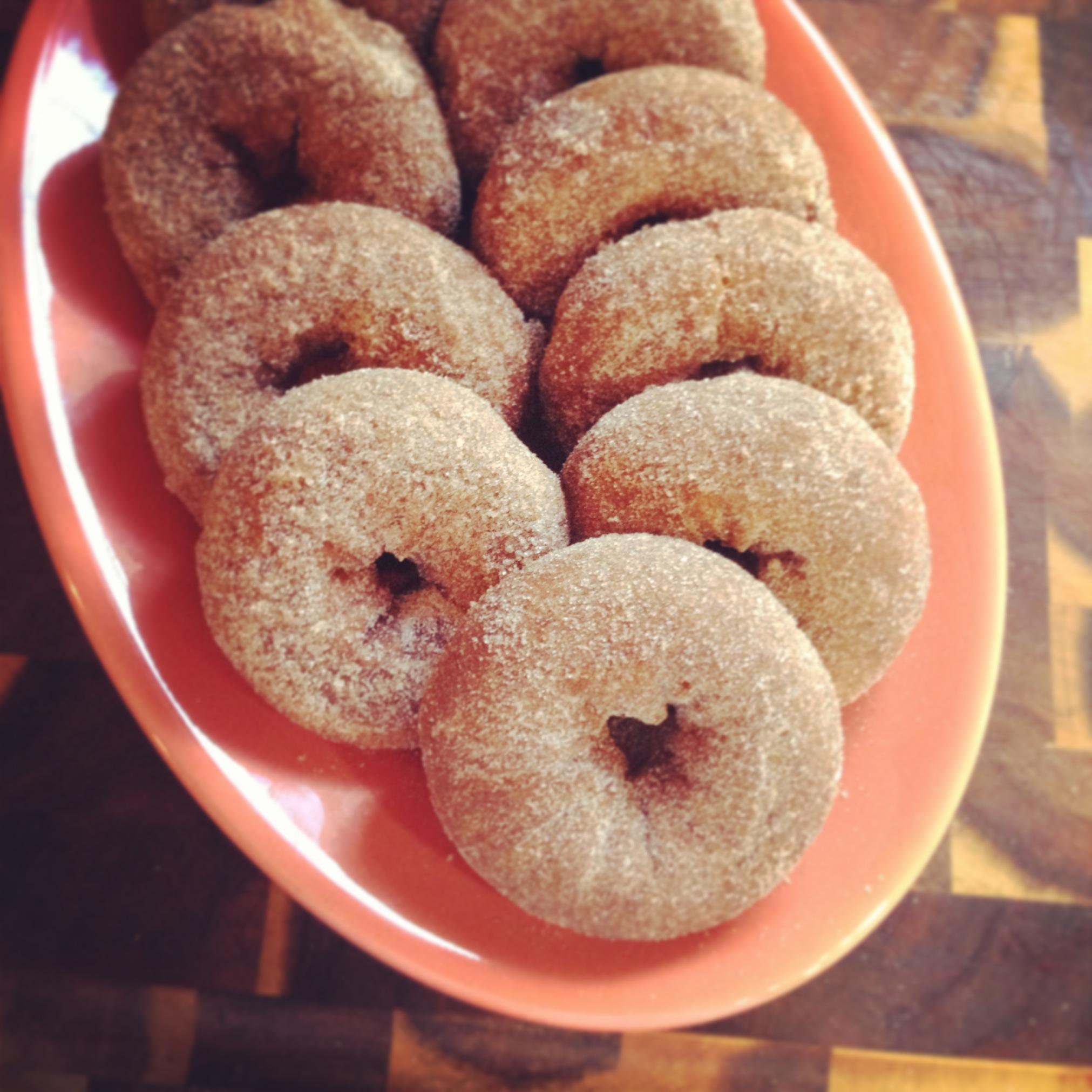 Fresh_Fancy_Doughnuts.JPG
