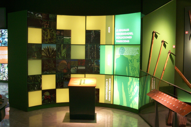 Museo_Botanico_Cordoba_02.jpg