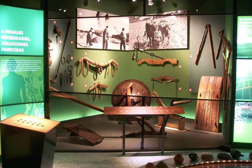 Museo_Botanico_Cordoba_03.jpg
