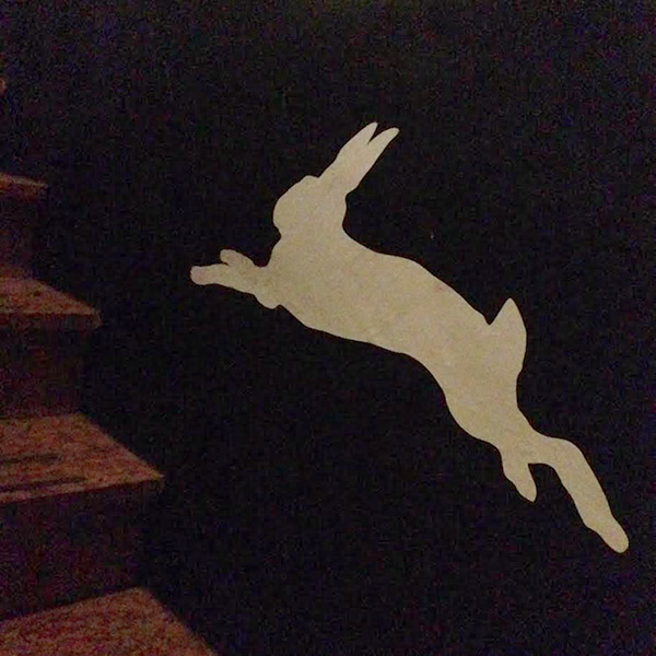 Follow the white rabbit up the steps to the upstairs shop at Zoo.