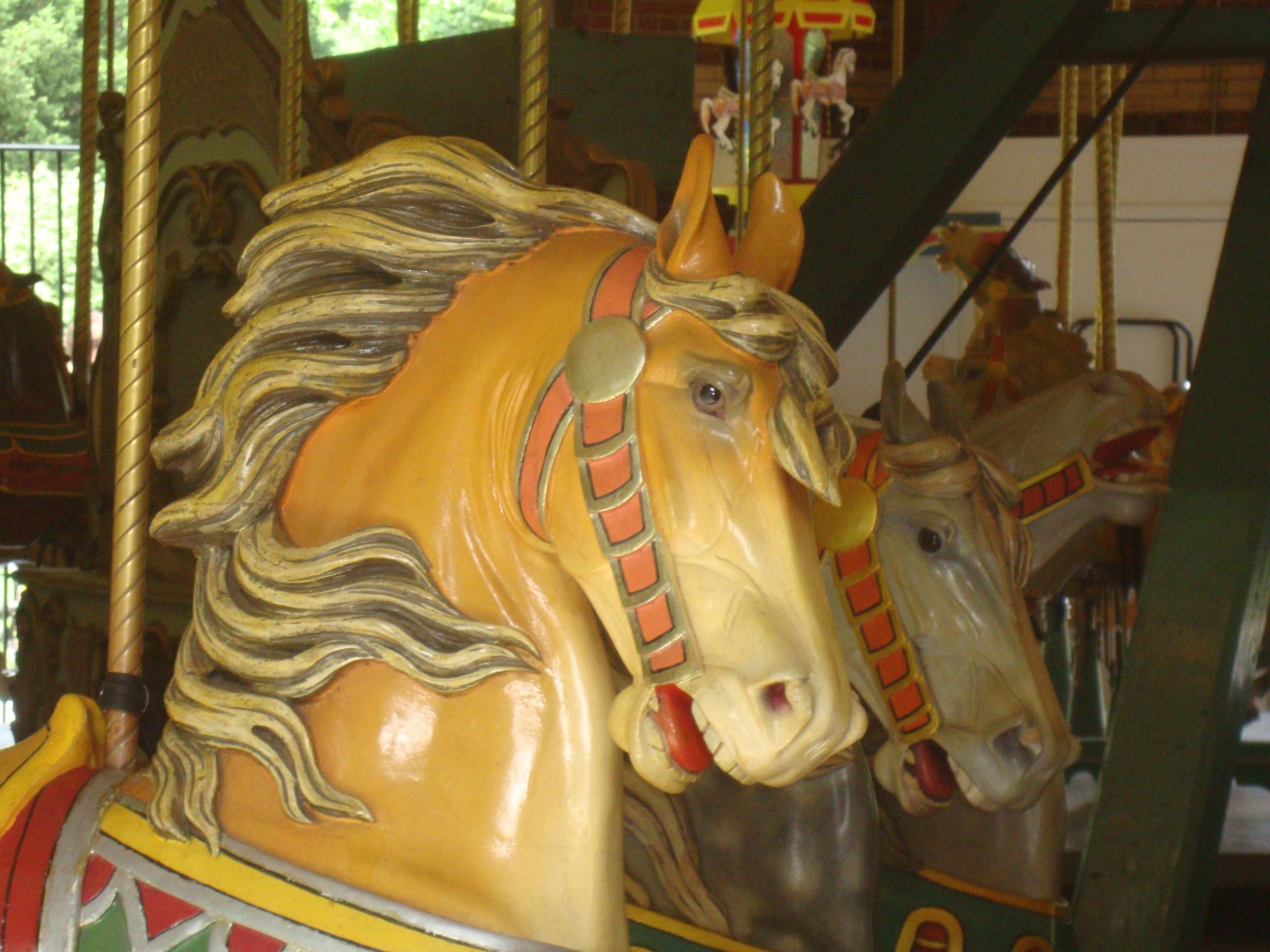 carousel `.JPG