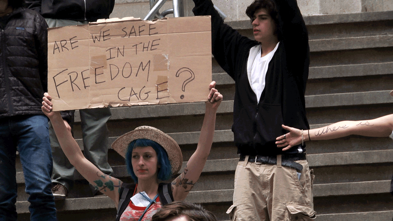 "In production with  ""The Freedom Cage - Part 1 #OccupyWallStreet"""
