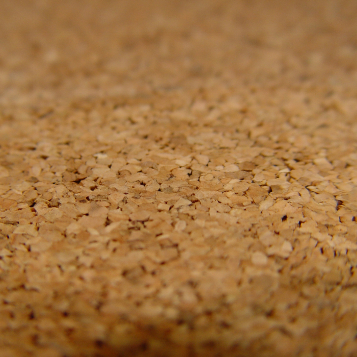 Many people don't know about cork flooring, but it's a great option, especially if you want to be  eco-friendly! It's also a great non-slip floor, and great for spaces for the elderly!