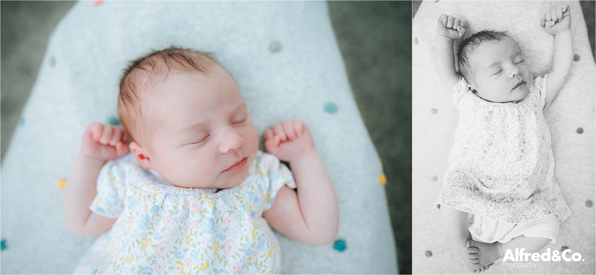 new born photo shoot in clitheroe