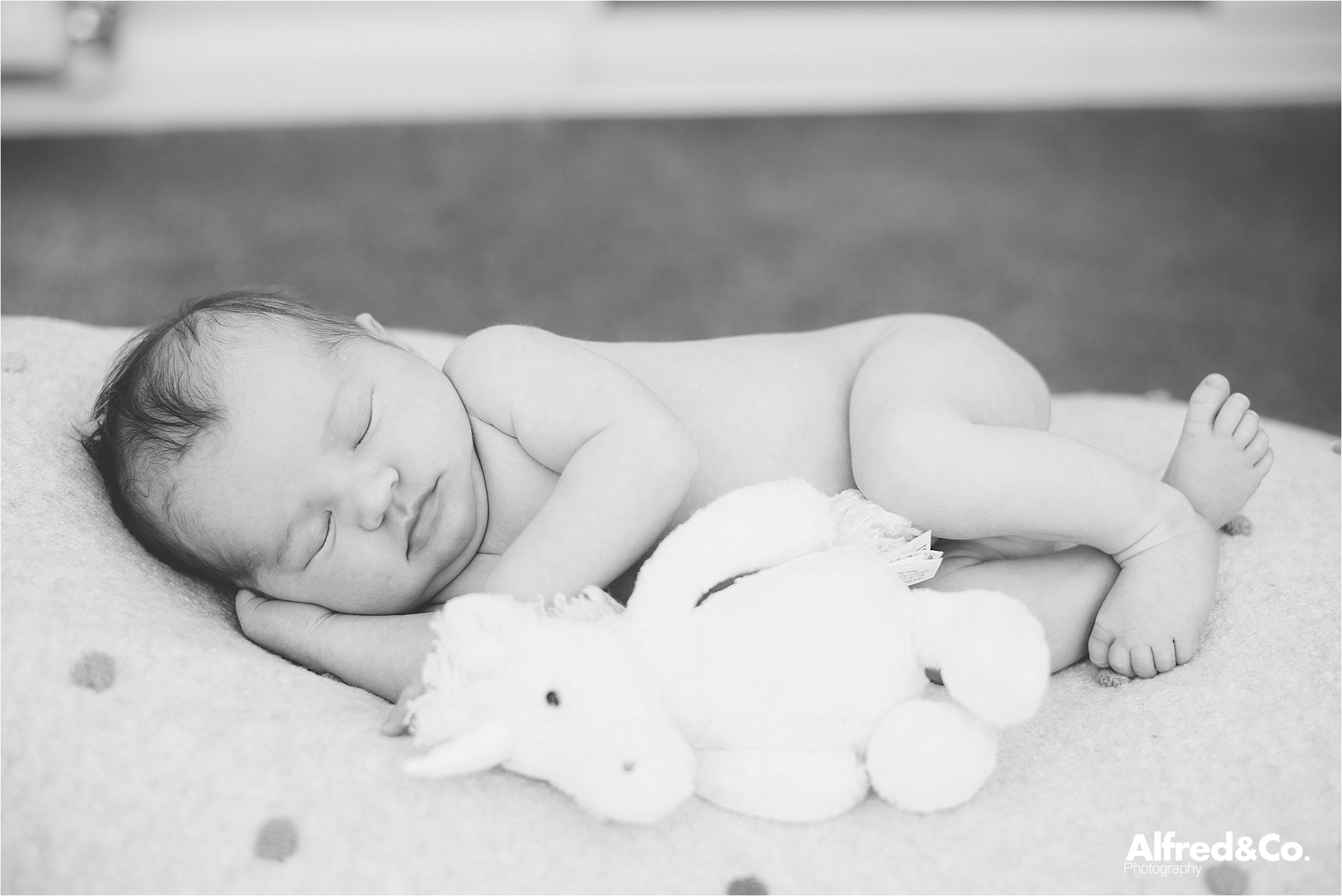 new born photographer ribble valley