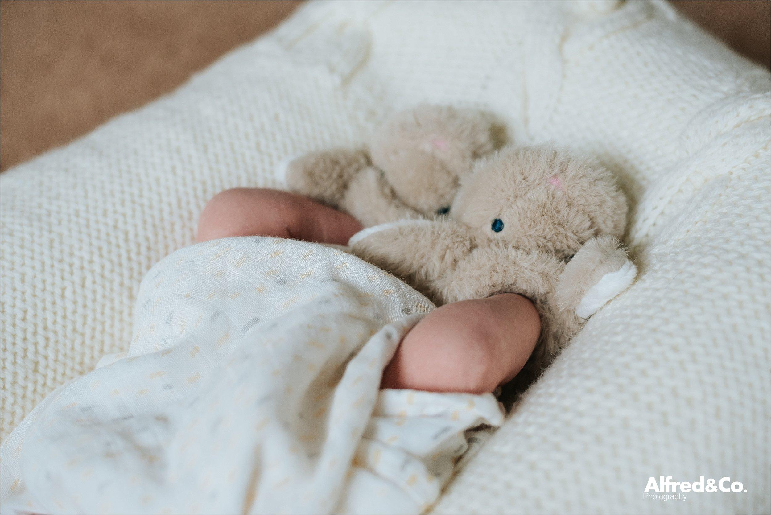 Newborn baby boy15.jpg