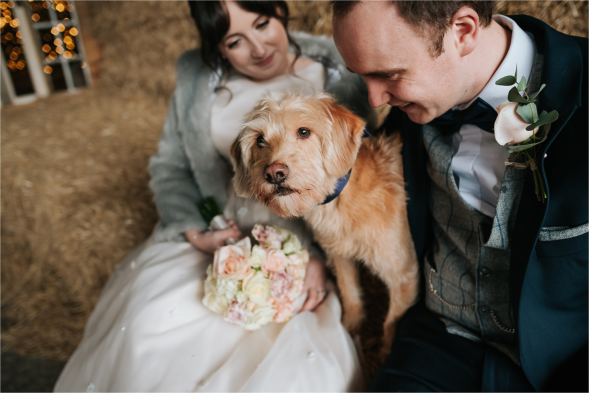 dog with bride and groom