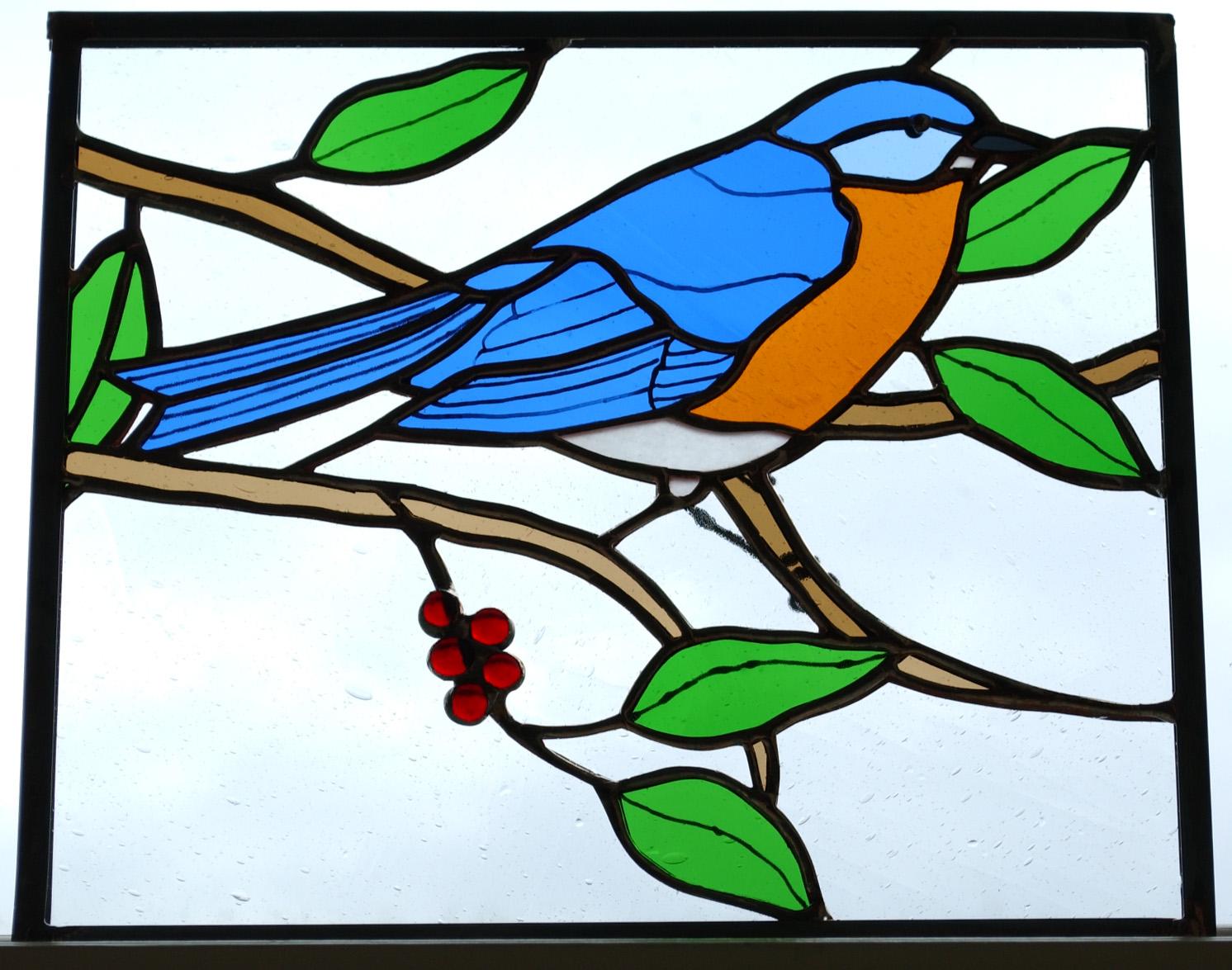 bluebird.jpg