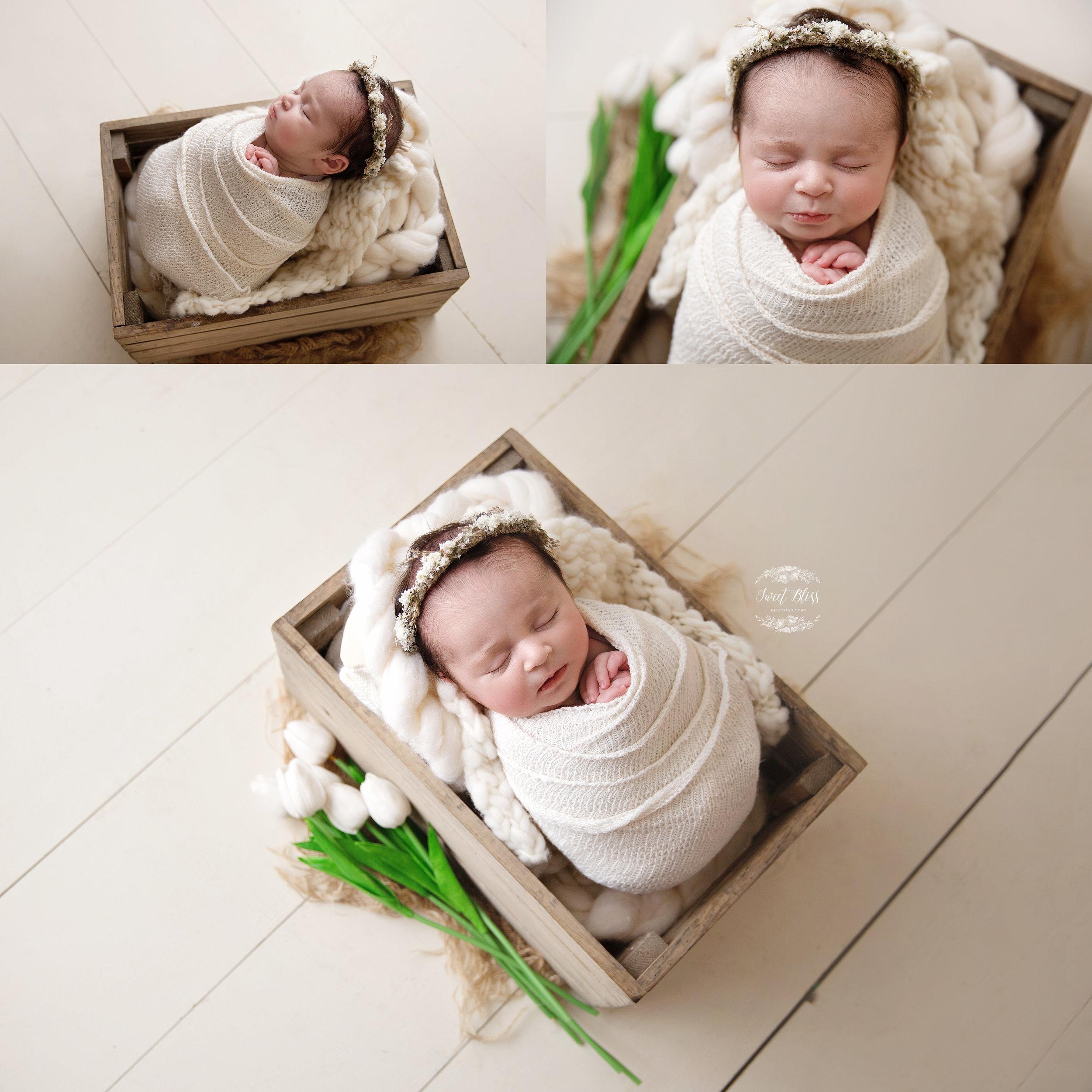 creamwrap_sweetblissphoto_newborn3.jpg