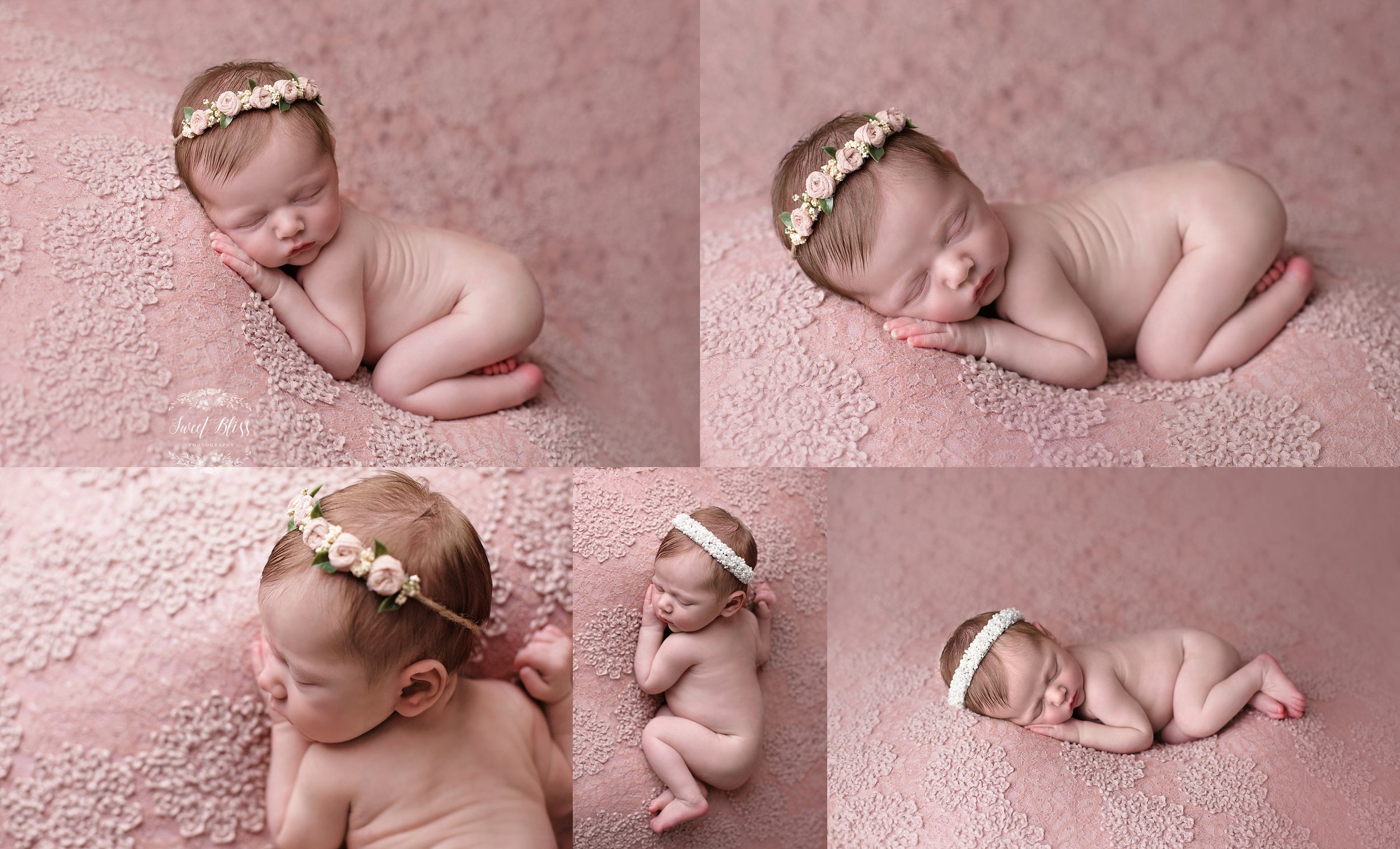 blush_baltimorenewborn_sweetblissphotography1.jpg