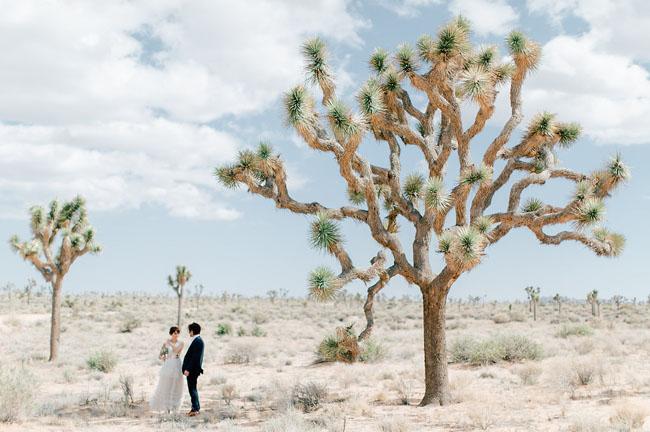 desert — Blog — Ashley Smith Events