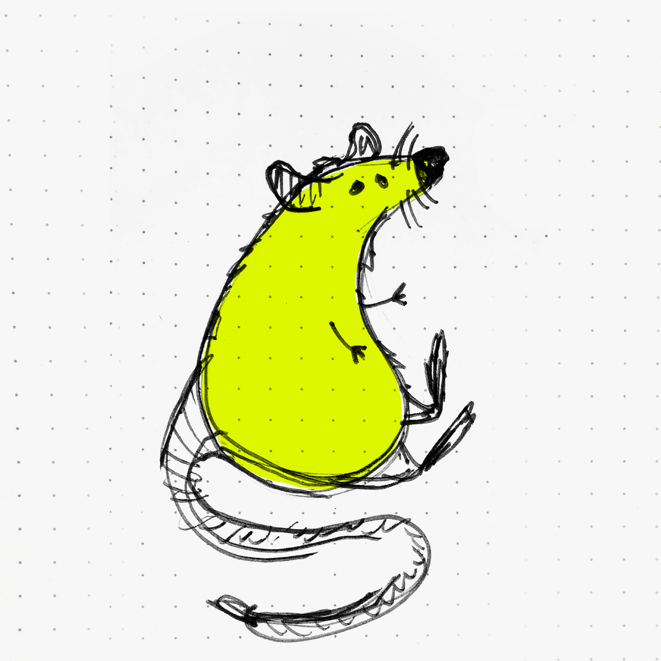 Critter of NYC#1Mr. Rat