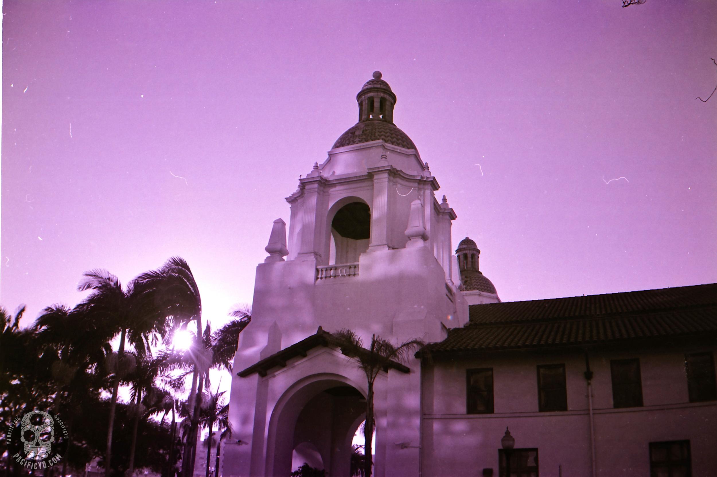 ahimatic-tmax-purple_0009.jpg
