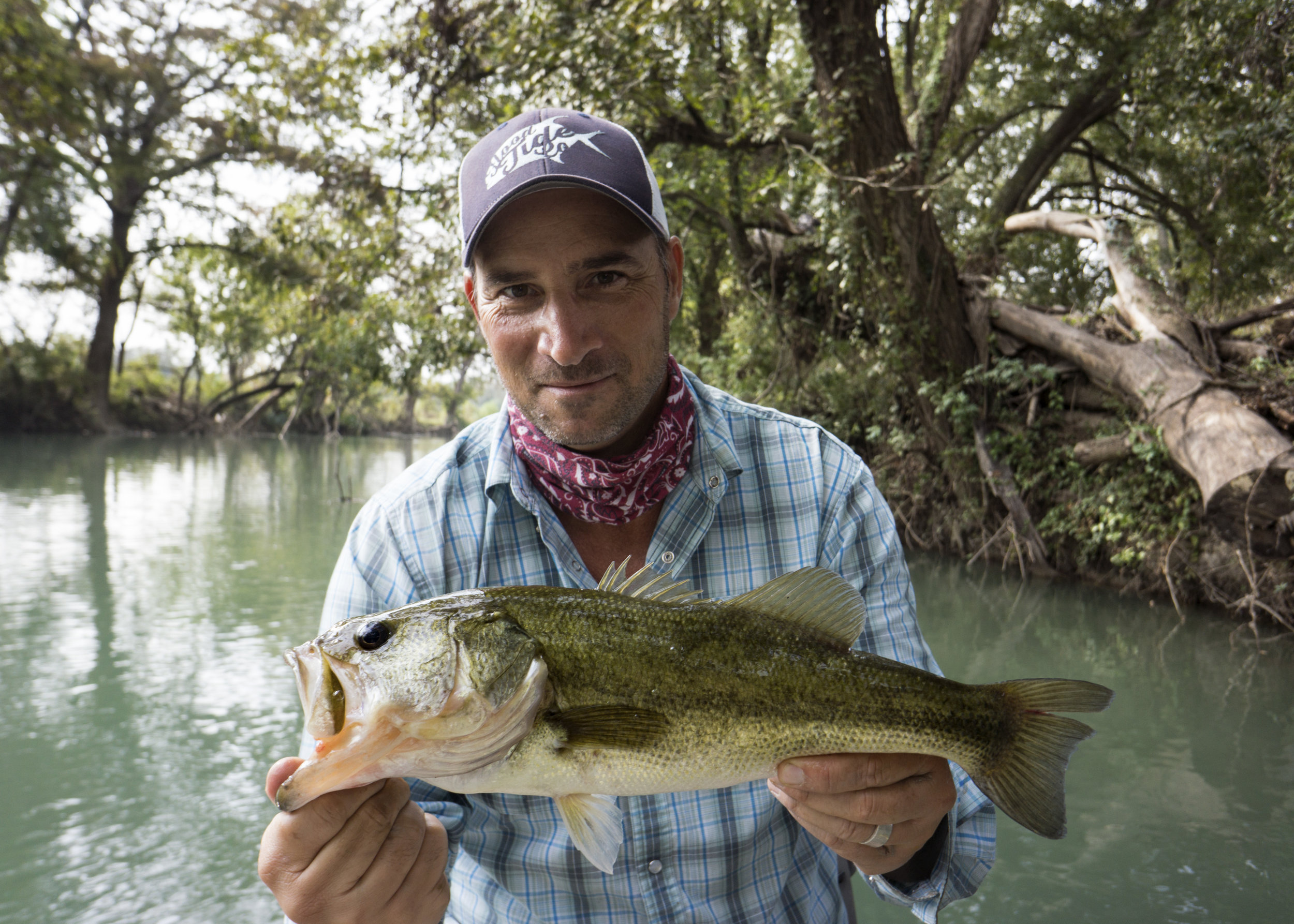 Largemouth Bass on the Guadalupe River