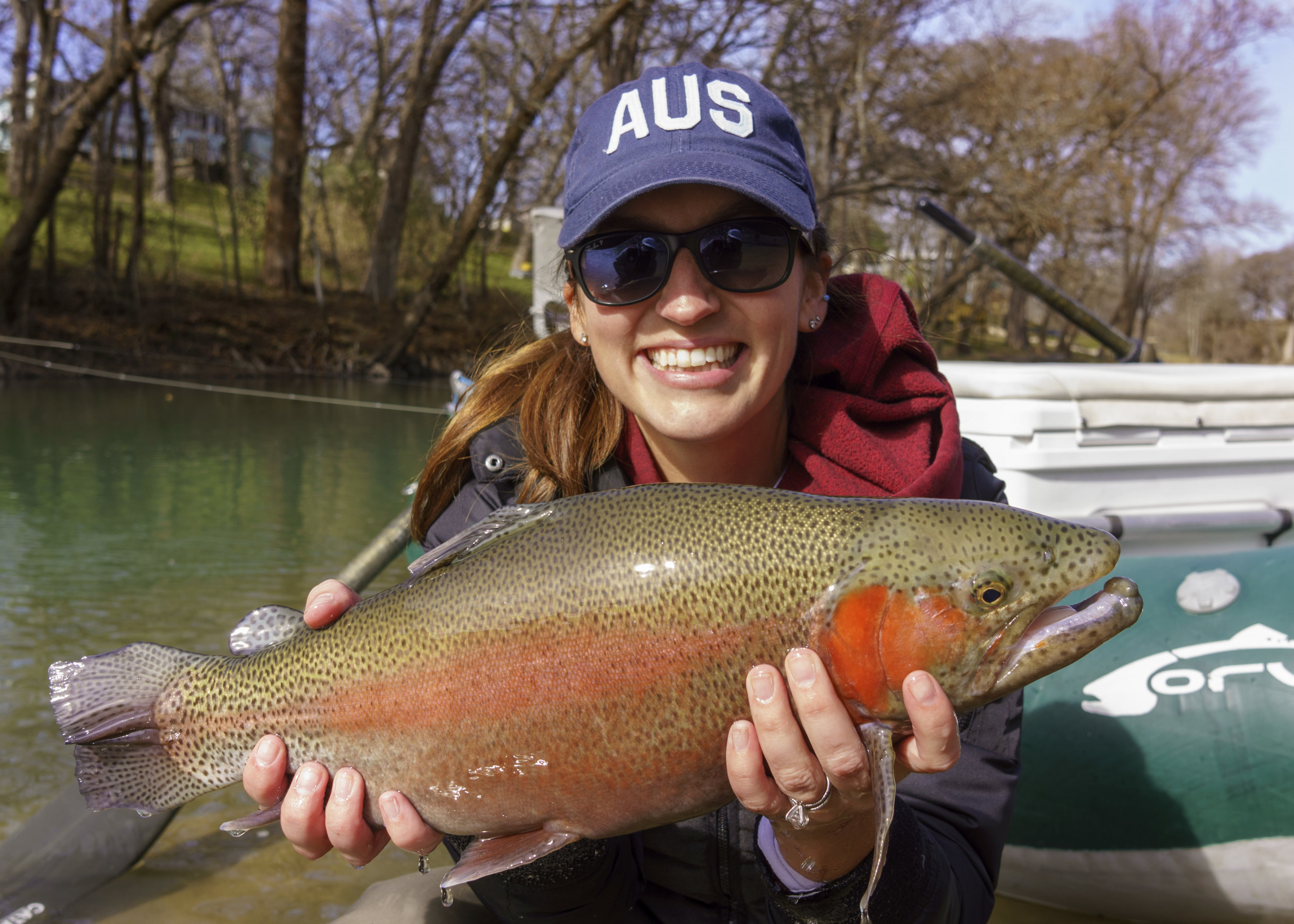Monster rainbow Trout