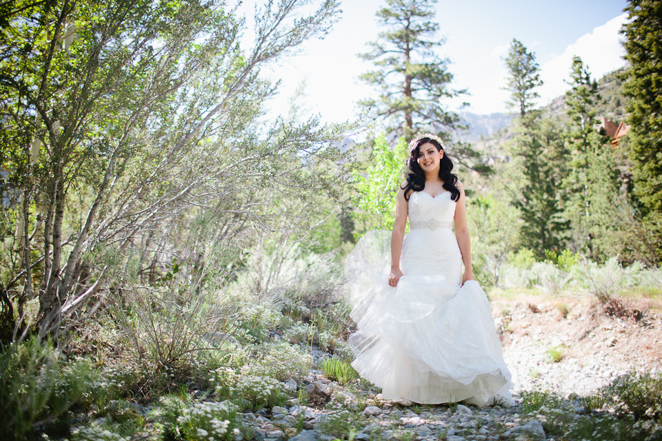 Mt Charleston wedding photography-1036.jpg