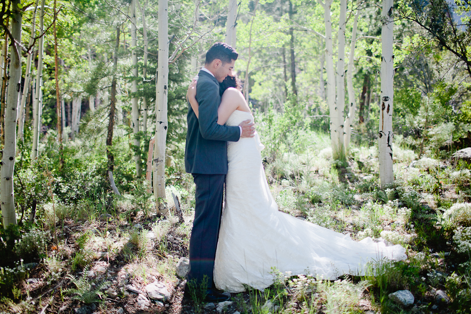 mt charleston wedding photography