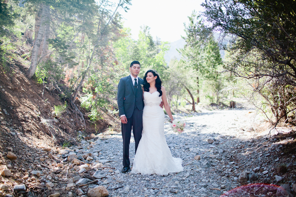 Mt Charleston wedding photography-1048.jpg