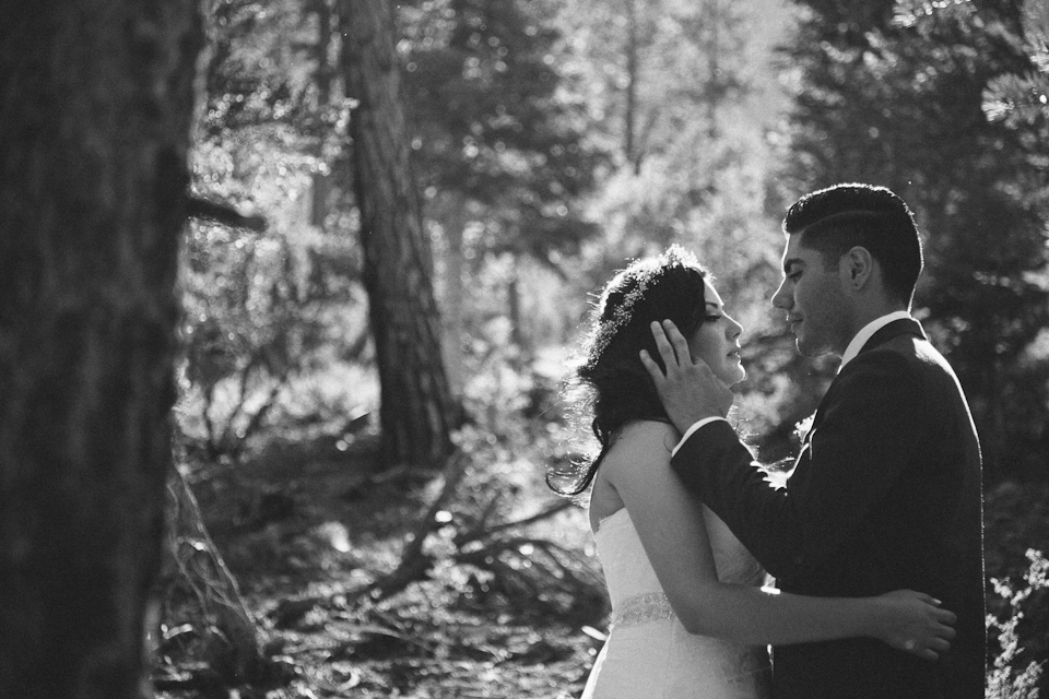 Mt Charleston wedding photography-1061.jpg