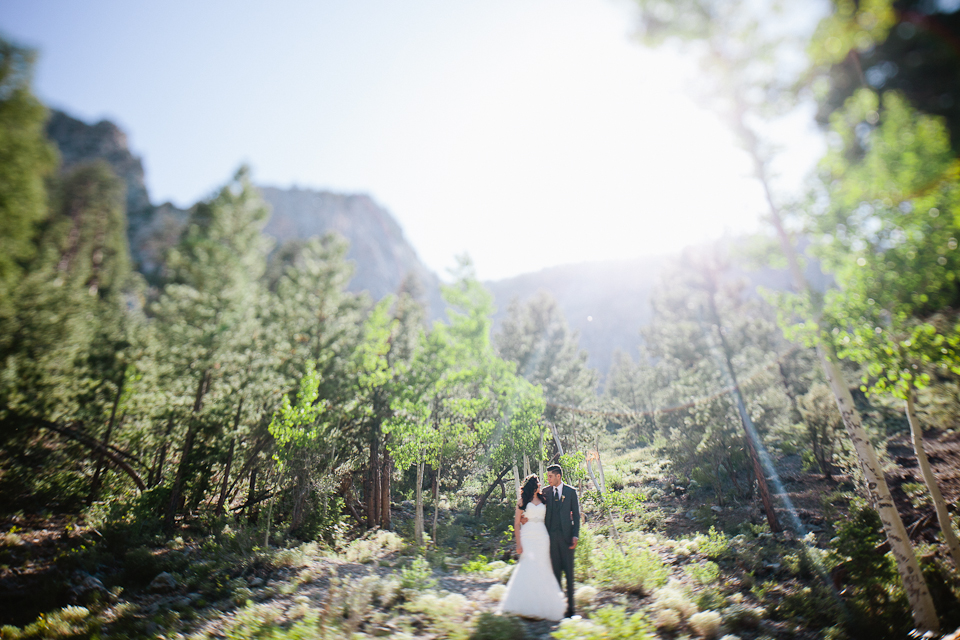 Mt Charleston wedding photography-1064.jpg