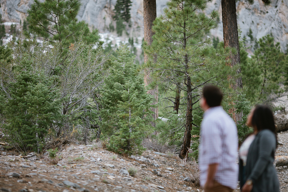 Erin & jeremy mt charleston engagement-1009.jpg