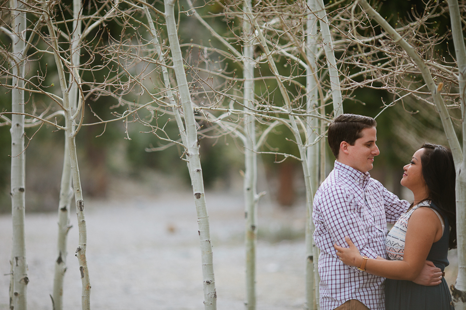 Erin & jeremy mt charleston engagement-1096.jpg