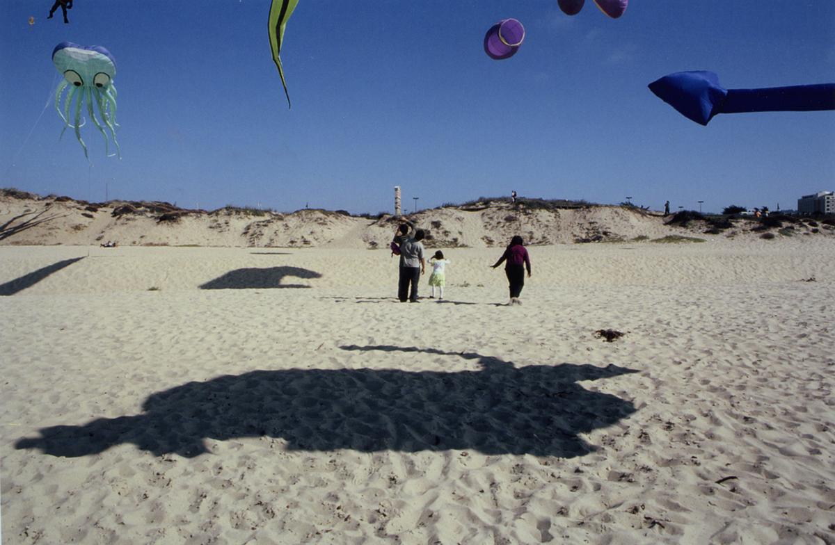 7_Kite Festival_Near Monterey.jpg