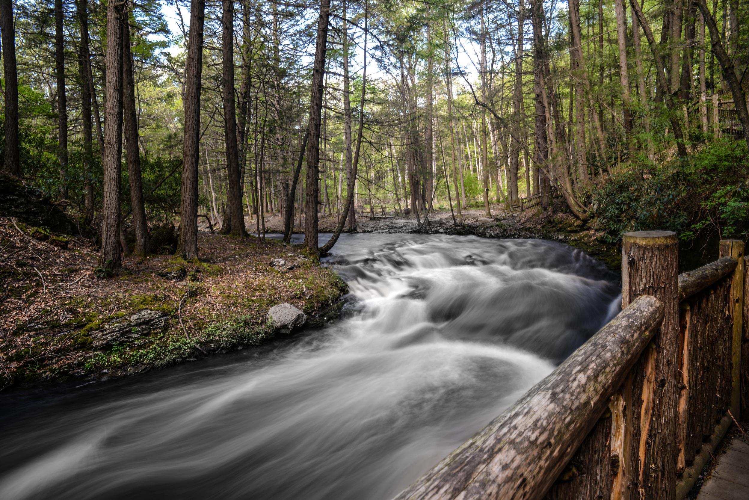 Bushkill Falls,PA