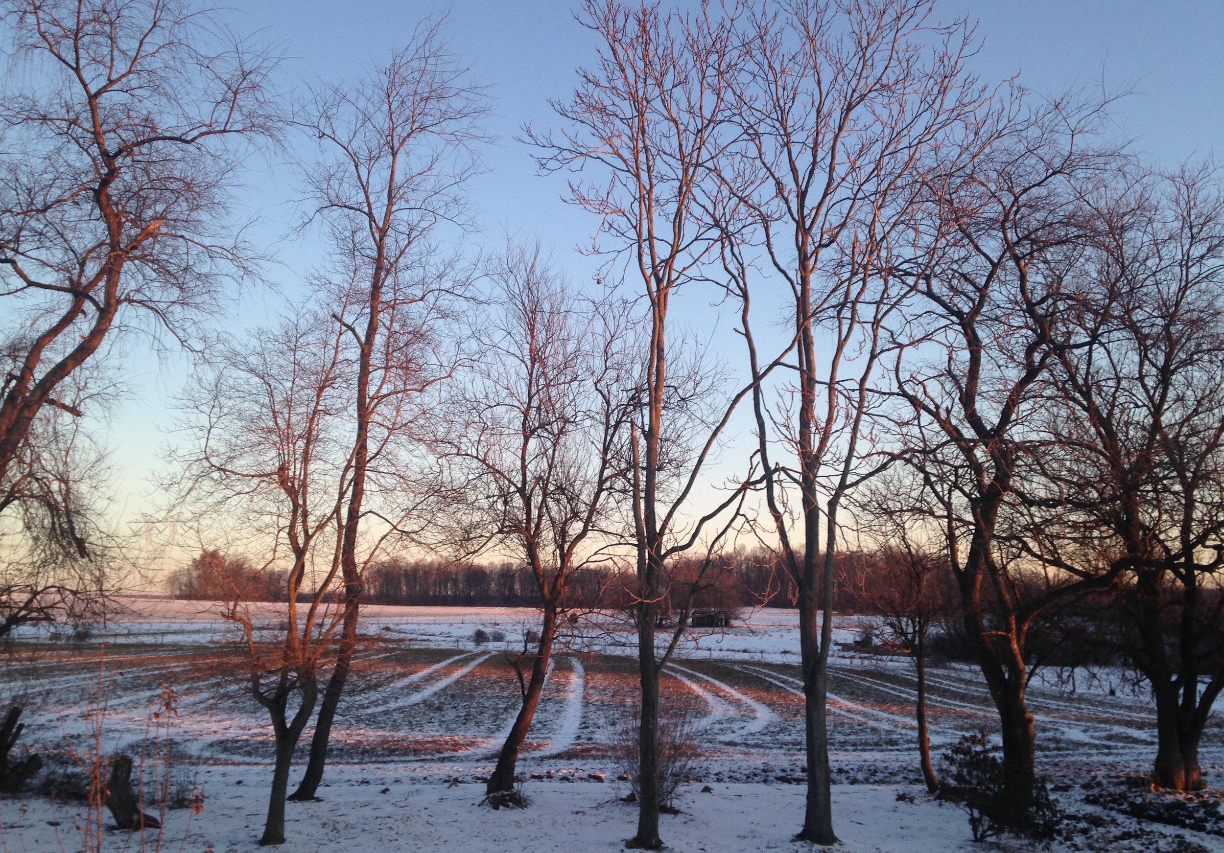 sunrise, moonset ... new year's clarity - by gina loree marks 1/2/18