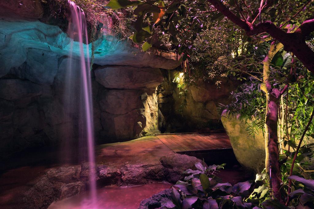 Cleveland Botanical Garden Glasshouse   Costa Rican Biome