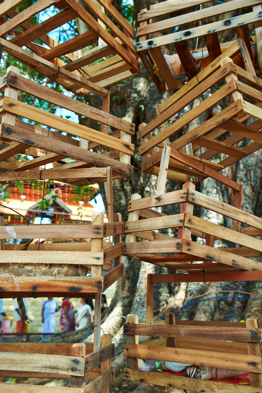 Fertility Cradles & Dolls Under the Banyan Tree, Kollam.