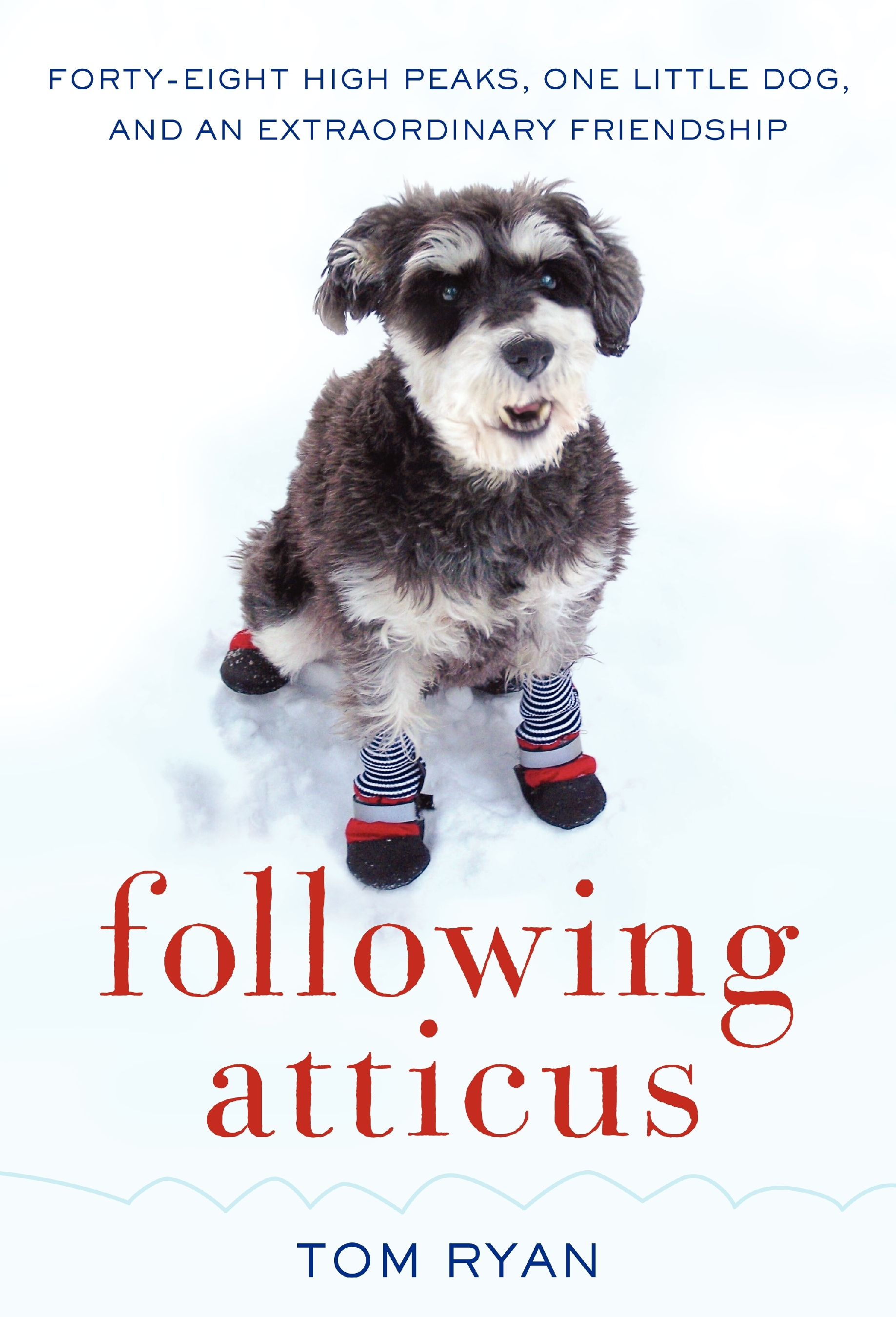 Following_Atticus_Cover.jpg
