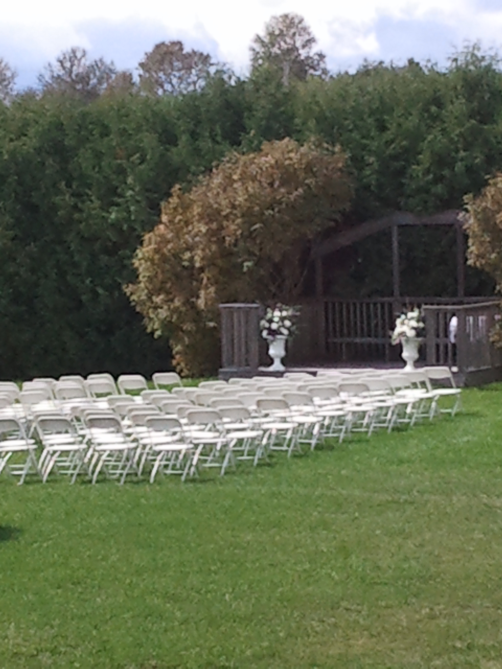 wedding outside.jpg