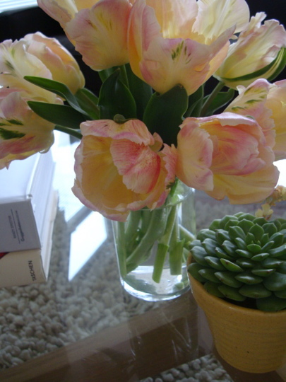 tulips-on-table