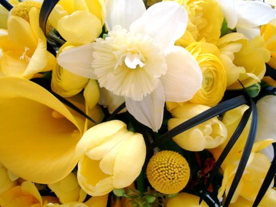 flower-close-up1
