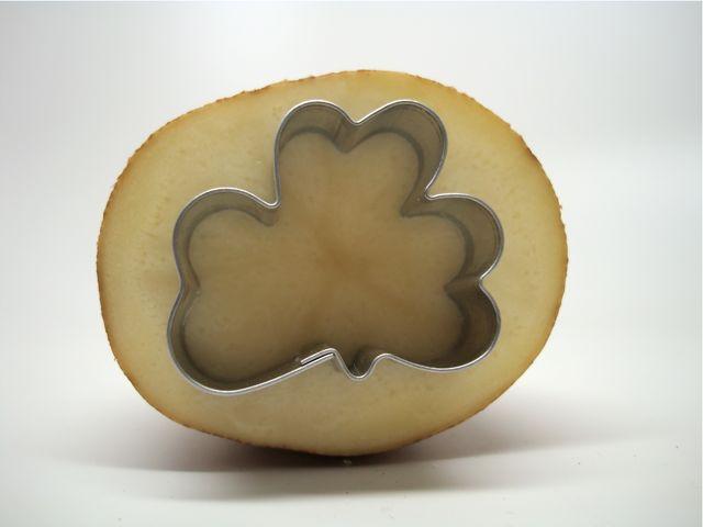 potato21