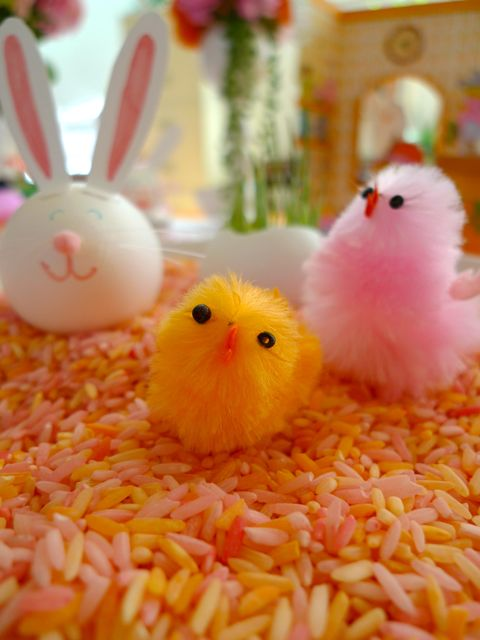 easter-chick-bunny-rice.jpeg