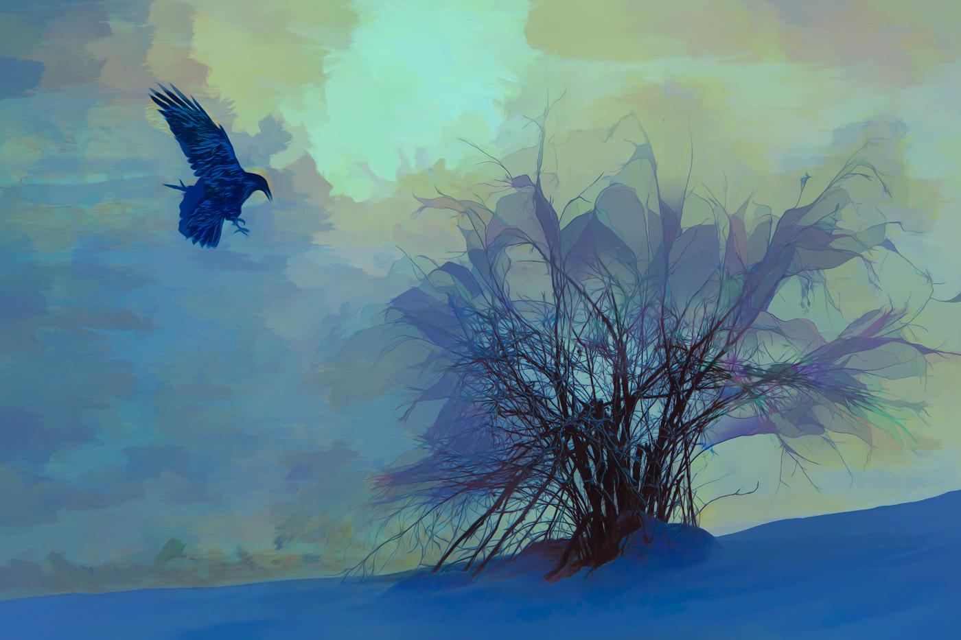 Raven Fantasy.jpg