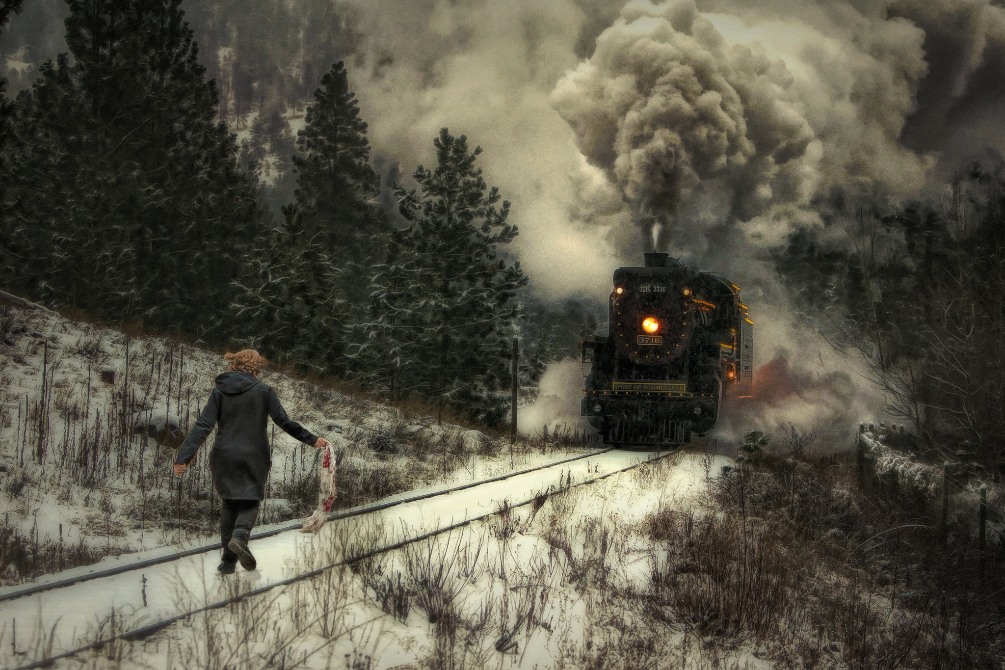 Girl on The Tracks, a composite photo that tells a very personal story of my wifes battle with cancer. She runs head long at the charging locomotive, confronting her disease. Sold