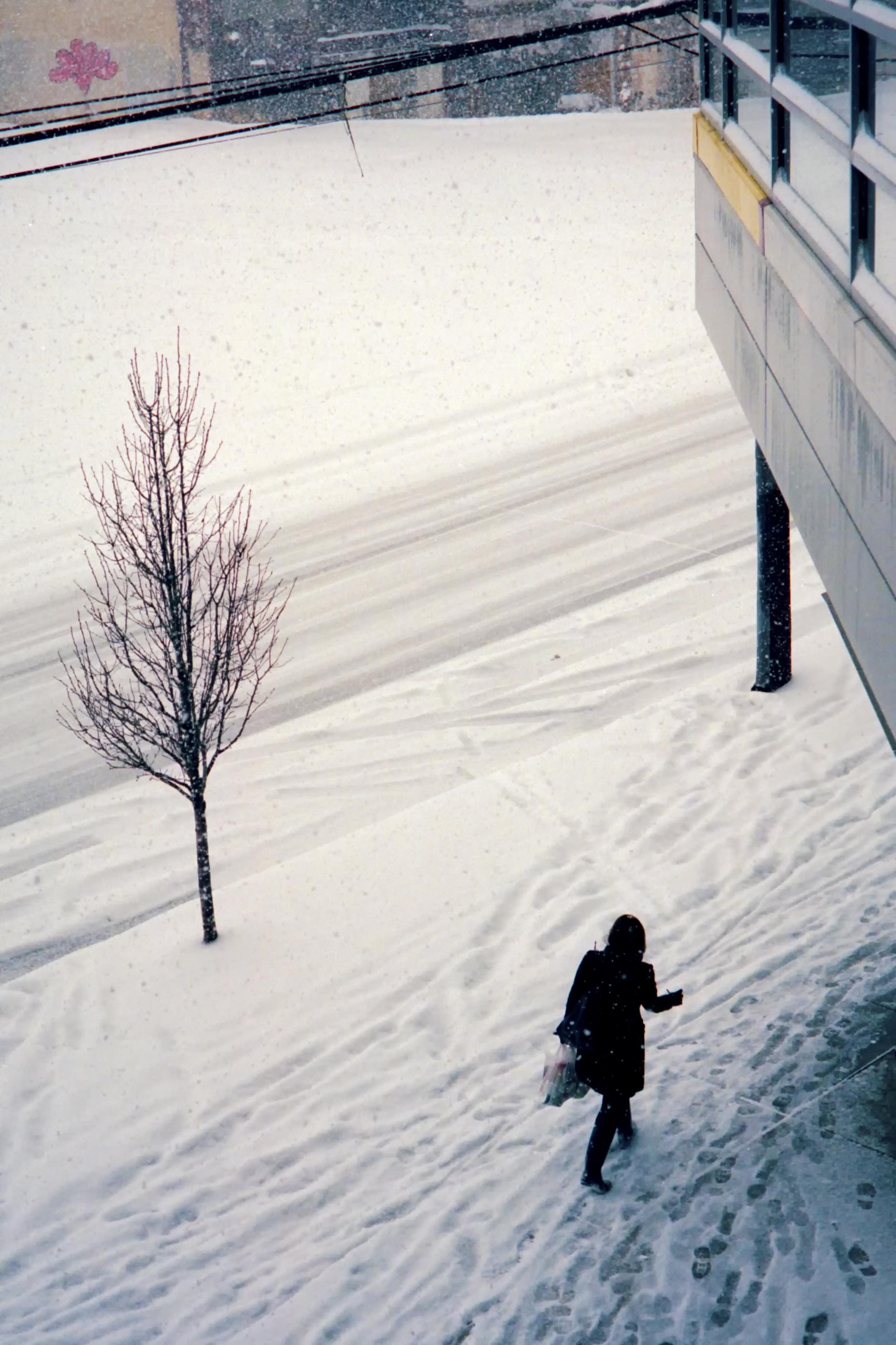 SnowStorm35mm_Roll1 15 300.jpg